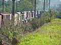 Comboios em cruzamento no pátio da Estação Ferroviária de Salto - Variante Boa Vista-Guaianã km 210 - panoramio (17).jpg