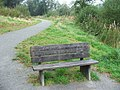 Commemorative Bench at Wistlandpound - geograph.org.uk - 1498559.jpg