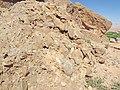 Conglomerate Sedimetary Rock Morocco.jpg
