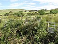 Corveen Townland - geograph.org.uk - 1380103.jpg