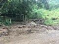 Costa Rica - Nate Aftermath 1.jpg