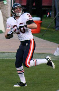Craig Steltz American football safety