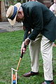 Croquet with the Fellows.jpg