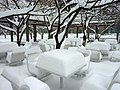 Crystal City Snow - Snow Dining on Snow (4198309223).jpg