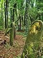 Częstochowa - cmentarz żydowski....jpg