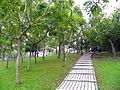 Daan Park West Hill.jpg