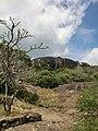 Dambulla, Sri Lanka - panoramio (156).jpg