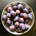 Damson plums - Flickr - Stiller Beobachter.jpg