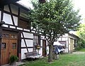 Dannemarie, Haut-Rhin, Alsace, France. Traditional Alsatian house. - panoramio.jpg