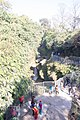 Davis Fall, Nepal-WLV-1776.jpg