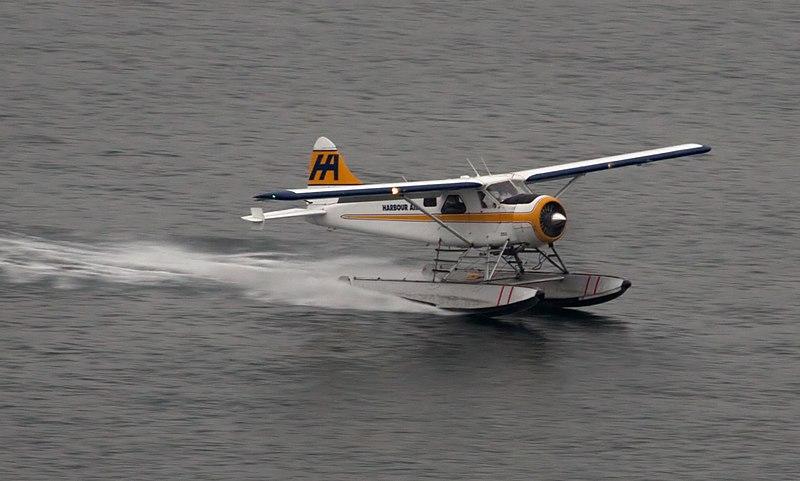 [Obrazek: 800px-De_Havilland_Canada_DHC-2_Beaver%2...19553).jpg]