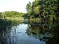 Dehmsee - Kanal zur Spree 12-07-2010 20.jpg