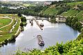 Der Neckar bei der Staustufe Poppenweiler.jpg