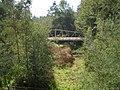 Desde Puente La Yesca. - panoramio.jpg