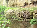 Devetashka cave 016.jpg