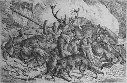 Eine Wolfs Geschichte Wikisource