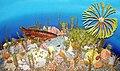 Diorama of a Devonian seafloor 1 (44898894464).jpg