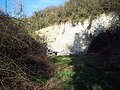 Disused Chalk Pit near Baverstock - geograph.org.uk - 329685.jpg