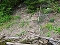 Dobryanskiy r-n, Permskiy kray, Russia - panoramio (238).jpg