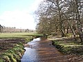 Dockens Water, New Forest - geograph.org.uk - 760084.jpg