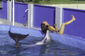 Dolphin imitates the behavior of a human.png