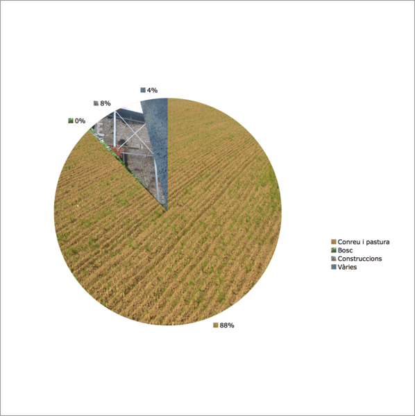 Donceel (Belgium): Land use in 2004: 88 agriculture, <1% forest; 8% construction, 4% others