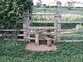 Double step stile - geograph.org.uk - 436516.jpg