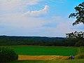 Driftless Area - panoramio (42).jpg