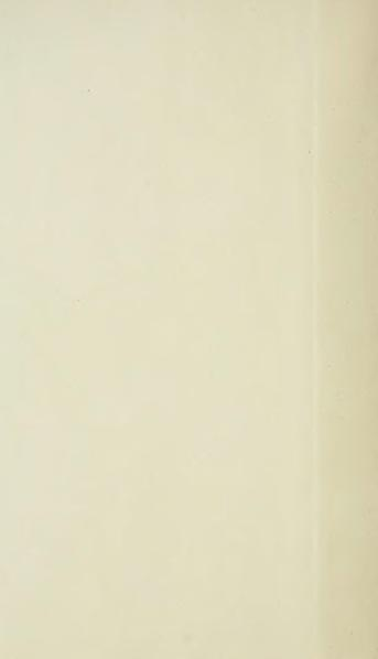 File:Du Bellay - Œuvres complètes, édition Séché, tome 2.djvu