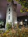 Dublin - St. Audoen's Church, Dublin - 20190809223909.jpg