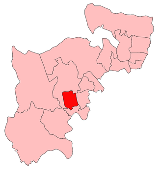 Ealing (UK Parliament constituency) - Image: Ealing 1918