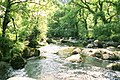 East Dart River at Dartmeet - geograph.org.uk - 22470.jpg