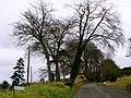 Edenderry Road, Belfast - geograph.org.uk - 701216.jpg