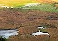 Efteni Gölü - panoramio.jpg