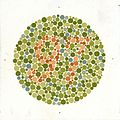 Eight Ishihara charts for testing colour blindness, Europe Wellcome L0059157.jpg