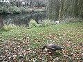 Eimsbütteler Park, Hamburg (38524613660).jpg