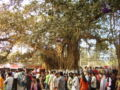 Ekushey Book Fair Dhaka Bangladesh 01.JPG