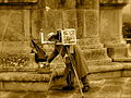 El viejo fotógrafo - II (4231940442).jpg