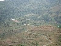 Elapeedika View.JPG