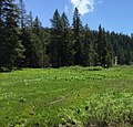 Eldorado National Forest - Social 17.jpg