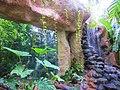 En Biouniverzoo, Chetumal, Q. Roo - panoramio (1).jpg