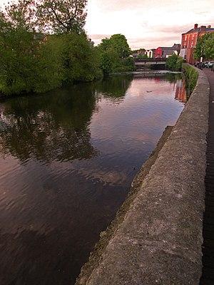 River Fergus - The river at Ennis
