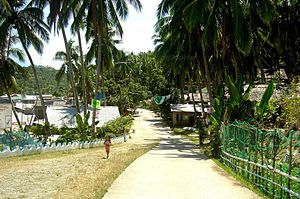 Tarangnan, Samar - Image: Entering Town Proper of Tarangnan