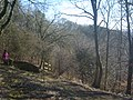 Entrance of Millington Woods looking out - panoramio.jpg