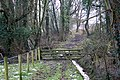 Entrance to Lower Arles Wood - geograph.org.uk - 1163251.jpg