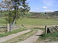 Entrance to a field - geograph.org.uk - 399181.jpg