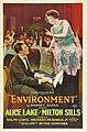 Environment poster.jpg