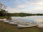 Everglades National Park Nine Mile Pond Canoe Trail.jpg
