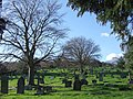 Exwick Cemetery - geograph.org.uk - 324951.jpg