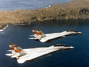 Fighter Squadron 1 (United States Navy) - F-14A Tomcats from VF-1 in the 1970s.